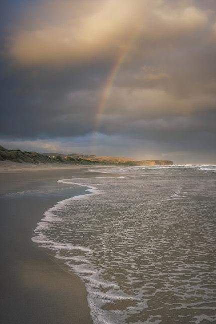 east coast rainbow-