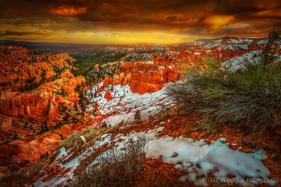 Excelsior,BryceCanyonWeb