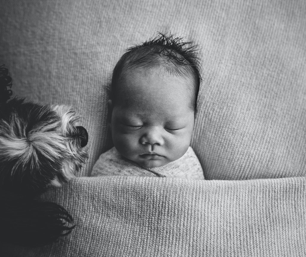 Tiffany Selzer Epson 2019 AIPP Victorian Newborn Photographer of the Year_7