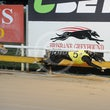 Albion Park 16 07 18 - Photos Taken By Toby Coutts