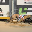 Albion Park 06 08 18 - Photos Taken By Toby Coutts