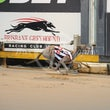Albion Park 30 08 18 - Photos Taken By Toby Coutts