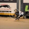 Albion Park 03 09 18 - Photos Taken By Toby Coutts