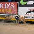 Albion Park 10 09 18 - Photos Taken By Toby Coutts