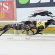 Albion Park 16 09 18 - Photos taken by David McInally