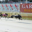 Albion Park 19 09 18 - Photos Taken By Toby Coutts
