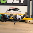 Albion Park 15 10 18 - Photos Taken By Toby Coutts