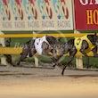 Race 6 Rockford
