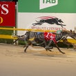 Albion Park 01 04 19 - Photos Taken By Toby Coutts