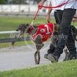 Race 5 Aberdeen