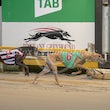 Race 9 Oxley One