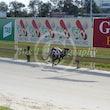 Race 3 Westend Park