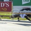 Race 10 Ron Zacapa