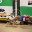 Albion Park 20 05 19 - Photos Taken By Toby Coutts