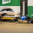 Race 3 El Nunu