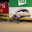 Race 5 Invictus Clive