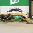 Albion Park 07 08 19 - Photos Taken By Toby Coutts