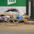Race 6 Hay William