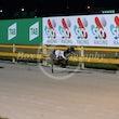 Race 12 Swift Story
