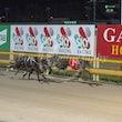 Race 12 Maywyn's Zephyr