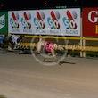 Race 3 Biscuit Benz