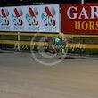 Race 11 Fernvale Ruby