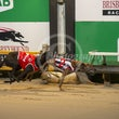 Albion Park 23 09 19 - Photos Taken By Toby Coutts
