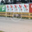 Race 1 Cyclone Penny