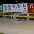 Race 10 Cosmo Bill