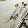 Race 7 Wheatacre