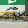 Albion Park 13 10 19 - Photos Taken By Toby Coutts