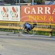 Race 1 Expat Monza