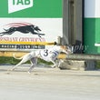 Albion Park 27 10 19 - Photos Taken By Toby Coutts