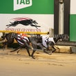 Albion Park 31 10 19 - Photos Taken By Toby Coutts