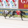 Race 2 Chanticleer