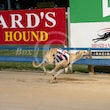 Race 9 Alby Valley