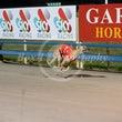 Race 4 Alby Valley