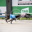 Albion Park 15 01 20 - Photos taken by Michael McInally