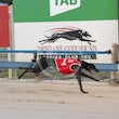 Albion Park 03 02 20 - Photos Taken By Toby Coutts