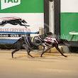 Race 9 Jimmy Stintson