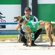 Albion Park 04 03 20 - Photos Taken By Toby Coutts