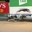 Albion Park 16 03 20 - Photos Taken By Toby Coutts