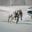 Race 9 Mista Kick
