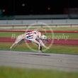 Race 1 Oski