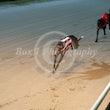Race 5 Blue Diva