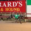 Race 9 Farmor Crownies