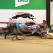 Albion Park 30 07 20 - Photos taken by Michael McInally & Toby Coutts