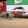 Albion Park 27 08 20 - Photos taken by Michael McInally and Toby Coutts