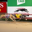 Albion Park 10 09 20 - Photos taken by Michael McInally & Toby Coutts
