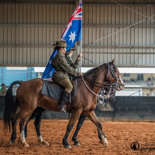 Light Horse - Images Light Horse rehearsal Brisbane  and display Gatton Heavy Horse Field Day